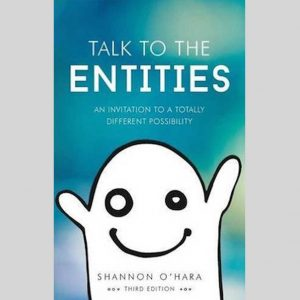 Talking to the Entities - An invitation to a totally different possibility - Shannon O'Hara